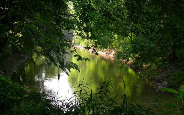 morning-river-1-1545